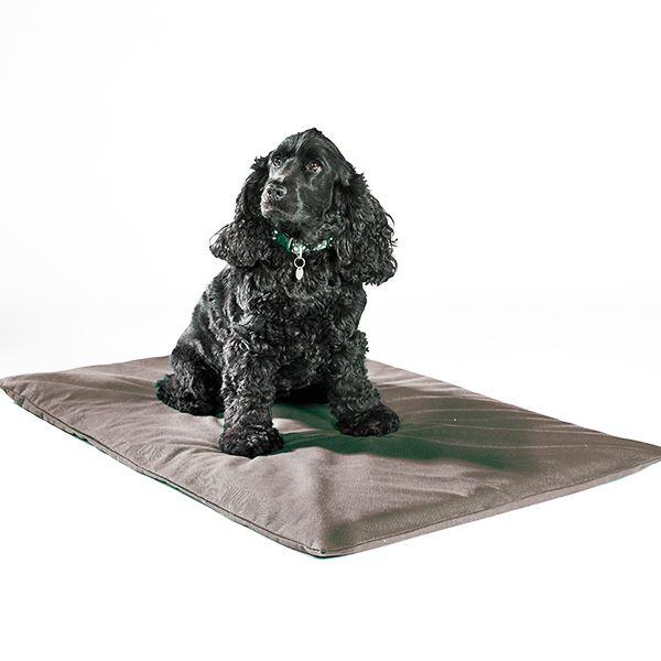 Odour-Control Dog Mat