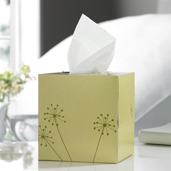 Lucy Tissues
