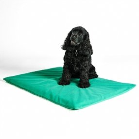 Spare Cover for Odour Control Dog Mat Forest Green 60 x 90cm