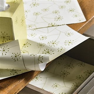 Lucy Scented Drawer Lining Paper