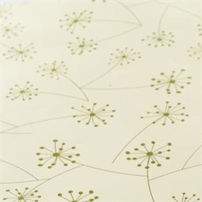 Out of Eden  Lucy Scented Drawer Lining Paper