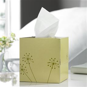 Out of Eden Lucy Tissues